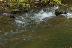 Een deel van Venoge-rivier Zwitsers Royalty-vrije Stock Afbeelding