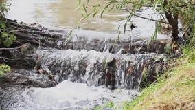 Een dichte omhooggaande video van weinig meeslepende kreek met water die over rtee stromen stock video