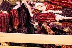 Een Dichte omhooggaande of Vrolijke en Kleurrijke droge Maïs stock afbeelding