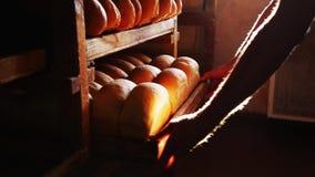 Een dienblad van brood stock video