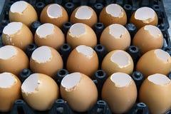 Een dienblad van gebroken eieren Stock Foto's