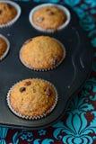 Een dienblad van muffins Royalty-vrije Stock Foto