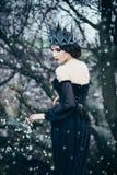 Een donkere kwade koningin Stock Afbeeldingen