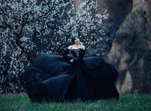 Een donkere kwade koningin Royalty-vrije Stock Fotografie