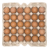 Een doos van eieren Royalty-vrije Stock Afbeelding