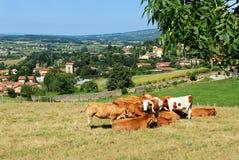 Een dorp in Beaujolais, Frankrijk Stock Fotografie