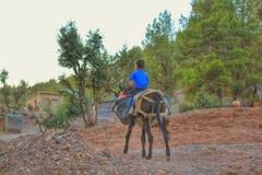 Een dorpsjongen die een ezel berijden Stock Fotografie