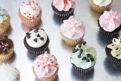 Een dozijn Geassorteerde Cupcakes op Zilveren Oppervlakte Stock Fotografie