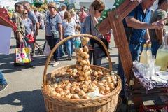 Een draagmand met uien in het regionale festival-eerlijke luk-Luc stock foto's