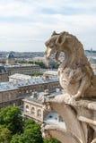 Een draak-gelijkaardige Gargouille op Notre Dame Cathedral Stock Afbeeldingen