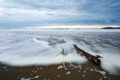 Een drijfhout opent een strand bij dageraad het programma Stock Foto