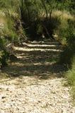 Een droog rivierbed in centraal Spanje Stock Fotografie