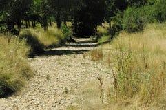 Een droog rivierbed in centraal Spanje Stock Foto