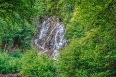 Een duidelijke waterval in de wildernis Stock Afbeelding