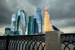 Een duif en zaken centreren de Stad van Moskou op de achtergrond, Rusland Royalty-vrije Stock Foto