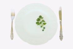 Een een vork en mes van de dinerplaat Royalty-vrije Stock Afbeelding