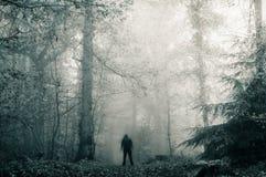 Een eenzaam vaag sinister cijfer met een kap aangaande een weg in een donker, griezelig bos in de winter Met een korrelig blauw,  royalty-vrije stock afbeeldingen