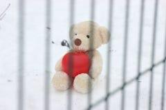 Een eenzame beer met een groot rood hart is achter de tralies verlaten, droevig op zoek naar goede handen en ziel help de armen e royalty-vrije stock foto