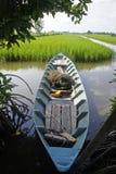 Een eenzame boot het padieveld Royalty-vrije Stock Afbeeldingen