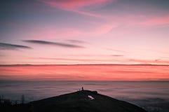 een eenzame die hondleurder bij zonsopgang tegen een overzees van mist wordt gesilhouetteerd royalty-vrije stock fotografie