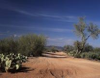 Een eenzame woestijnbinnenweg Stock Fotografie