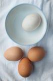 Een ei afzonderlijk aan drie eieren Stock Afbeelding