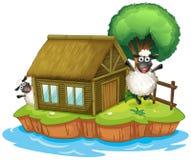 Een eiland met een inheems huis en twee sheeps royalty-vrije illustratie