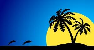 Een eiland met een palm Stock Foto's