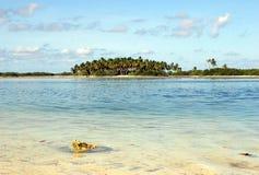 Een eiland van de Maldiven royalty-vrije stock fotografie