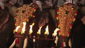 Een elegante vertoning van jeweled olifanten in Poonam stock videobeelden