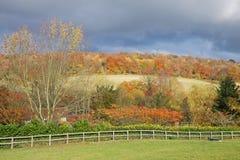 Een Engels Landelijk Landschap in de Herfst Stock Afbeelding