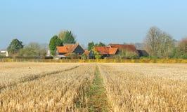 Een Engels Landelijk Landschap in de zonneschijn van de Winter Stock Afbeeldingen