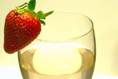 Een enkel glas wijn Stock Afbeelding