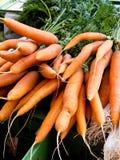 Een federatie van verse wortelen - wortelen Stock Fotografie
