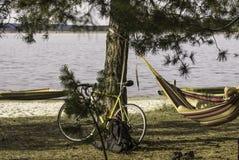 Een fiets dichtbij de pijnboom op de rivierbank, een fietser die in een hangmat rusten stock foto's