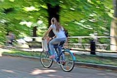 Een fietser in het park royalty-vrije stock afbeeldingen