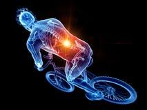 Een fietsers pijnlijke rug royalty-vrije illustratie