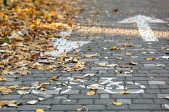 Een fietspad met grijze vierkante tegels wordt bedekt die stock afbeelding