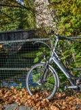 Een fietsparkeren in het centrum van Mijnheer, België stock fotografie