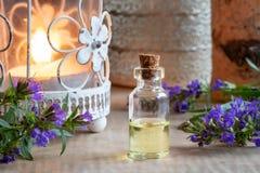 Een fles hyssopetherische olie met het bloeien hyssop stock fotografie