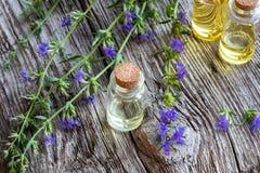 Een fles hyssopetherische olie met het verse bloeien hyssop stock foto's