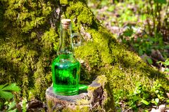 Een fles met een groene magische vloeistof op een bemoste stomp Magische drin Royalty-vrije Stock Fotografie