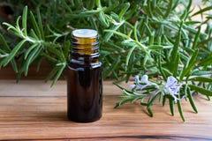 Een fles rozemarijnetherische olie met bloeiende rozemarijntakjes Stock Afbeelding