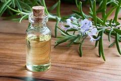 Een fles rozemarijnetherische olie met verse bloeiende rozemarijn Stock Foto's