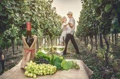 Een fles van wijn, wijnstok en glas wijn stock afbeelding