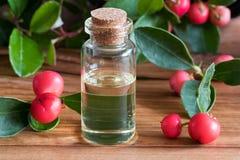 Een fles van wintergreen etherische olie op een houten achtergrond stock foto's