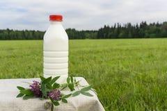 Een fles verse melk in een weide royalty-vrije stock afbeeldingen