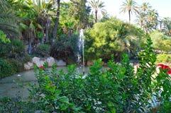 Een Fontein door Palmen en Groen dat in wordt omringd Stock Fotografie