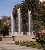 Een fontein is in een park Stock Afbeelding