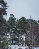 Een foto tijdens de wintertijd wordt genomen in Letland dat Royalty-vrije Stock Afbeelding
